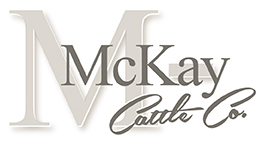 Logo image for McKay Cattle Company