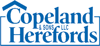 Logo image for Copeland & Sons Herefords LLC